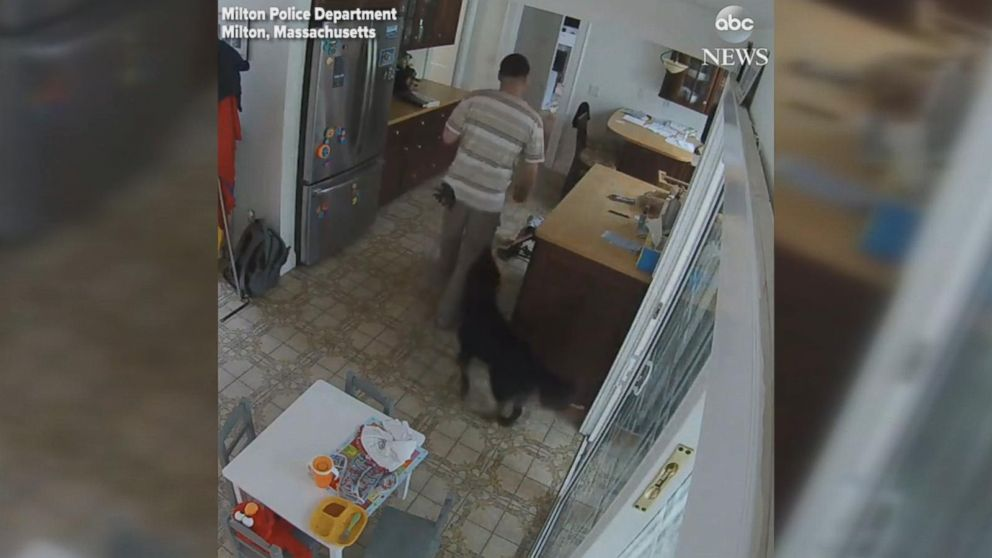 WATCH:  Burglar makes sure dog stays in the house