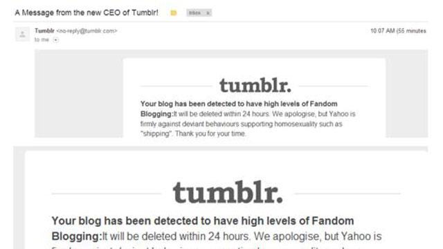 PHOTO:Beware, Fandom Blogging ahead.