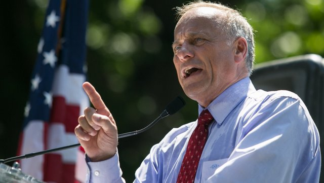 PHOTO: Rep. Steve King (R-IA) speaks during the DC March for Jobs in Upper Senate Park near Capitol Hill, on July 15, 2013 in Washington, DC.