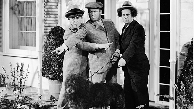 PHOTO:The Three Stooges experience some confusion while walking their dog in a still from an unidentified film. L-R: American actors Moe Howard (1897 - 1975), Curly Howard (1903 - 1952), and Larry Fine (1902 - 1975).