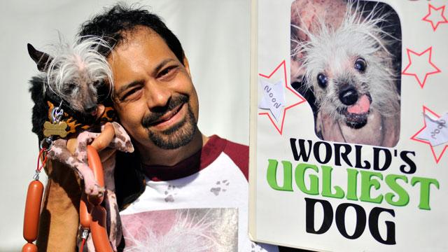 PHOTO:Rascal kicks off his campaign for World's Ugliest Dog.
