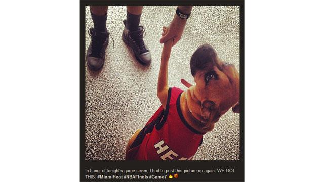 PHOTO:Internet Show-Offs: NBA Finals Fandom Online