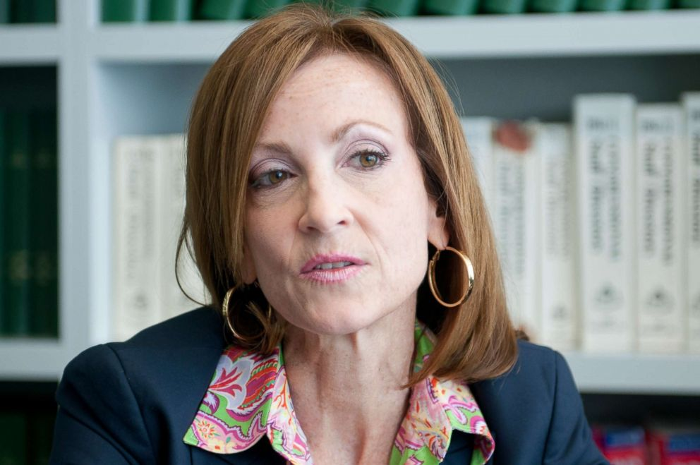 PHOTO: Former Congresswoman Nan Hayworth speaks to reporters during an interview, July 22, 2014.