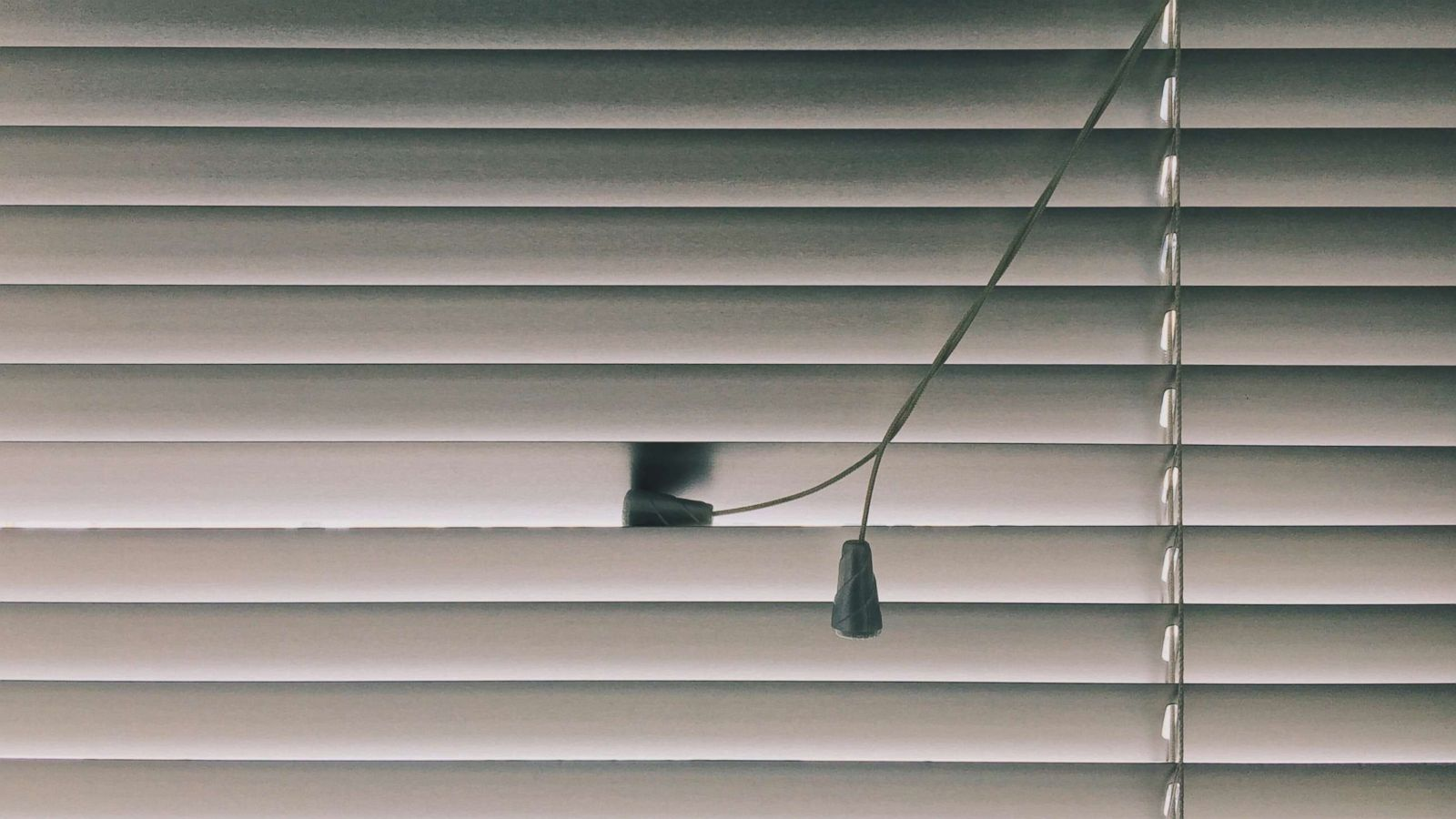 Blinds on plastic windows -100 photos of ideas for vertical and horizontal blinds