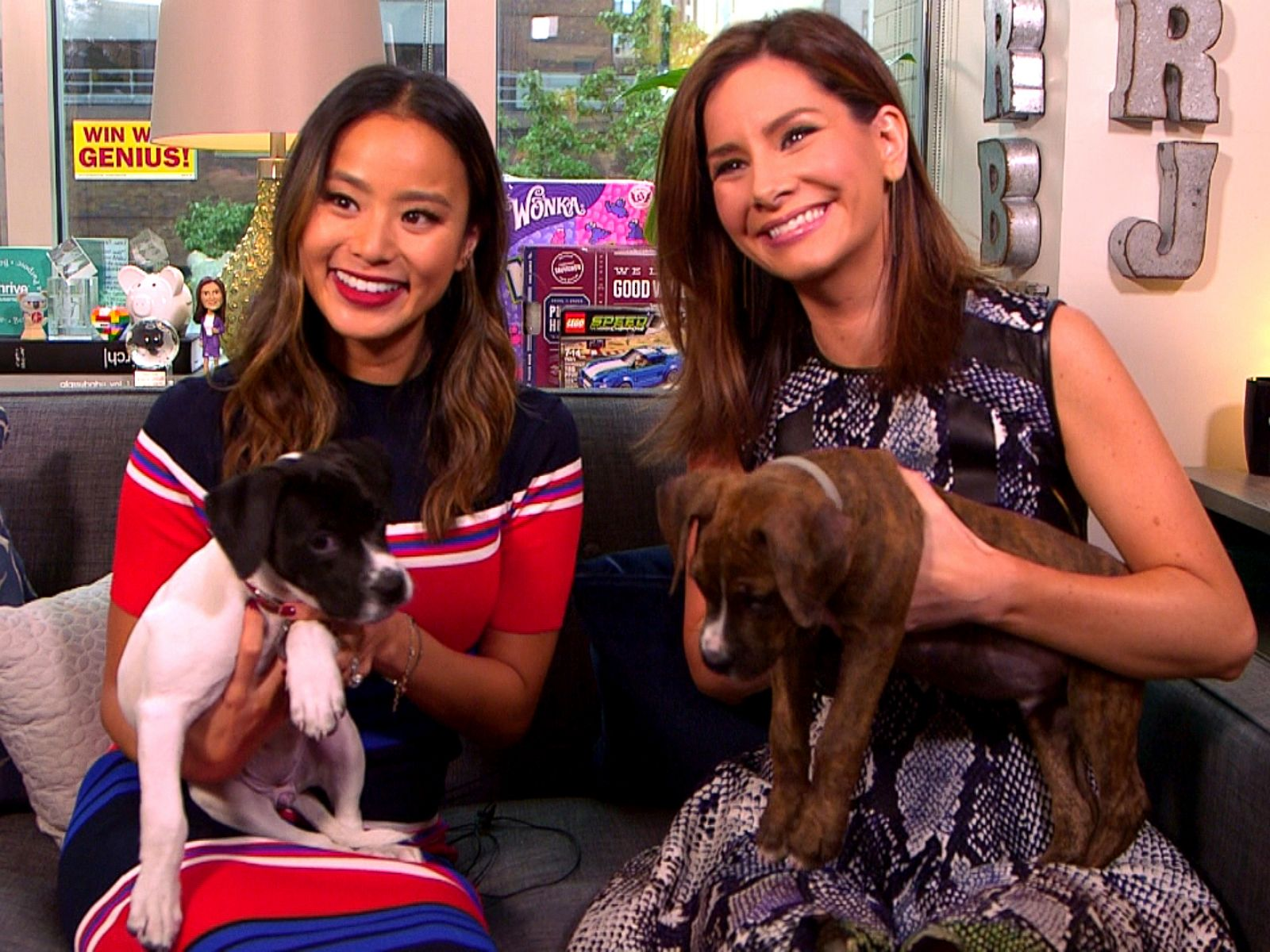 How Jamie Chung Turned Unemployment into Opportunity