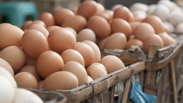 PHOTO: Americans must refrigerate their eggs due to the collection process.