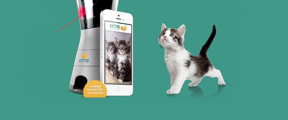 PHOTO: Kittyo launched a Kickstarter campaign, April 21, 2014.