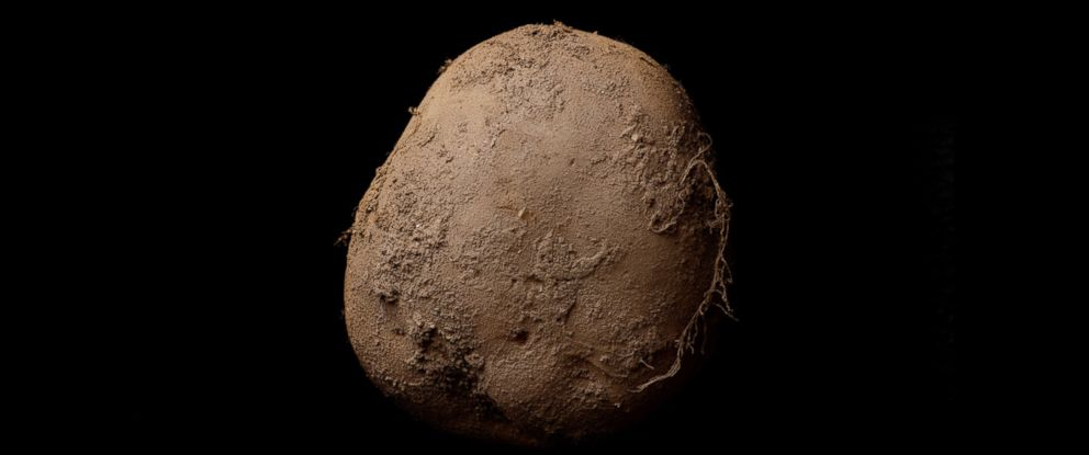 PHOTO: This photograph, Potato #345 by Kevin Abosch, was recently sold for over $1 million.