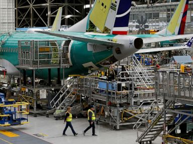 FAA pilots find new flaw with Boeing 737 Max Sources