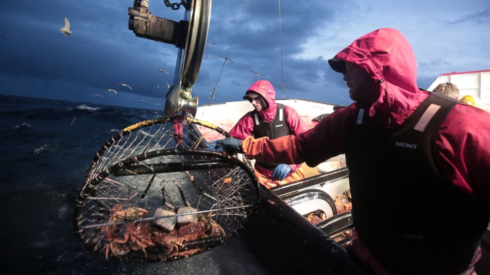 Deadliest Catch Captains Explain Working and Living in