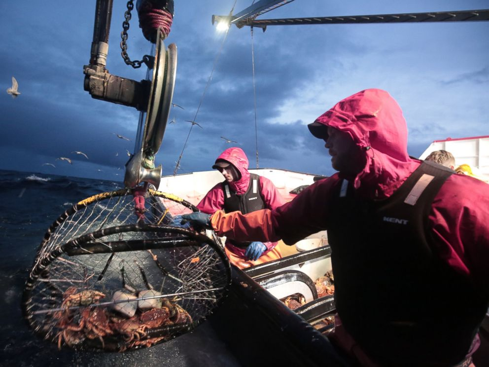 Deadliest Catch: Inside One of the World's Most Dangerous Jobs