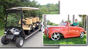 Photo: Golf Car Sales Spike