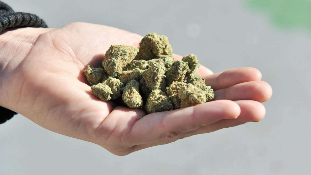 Nevada becomes 1st state to ban most pre-employment pot