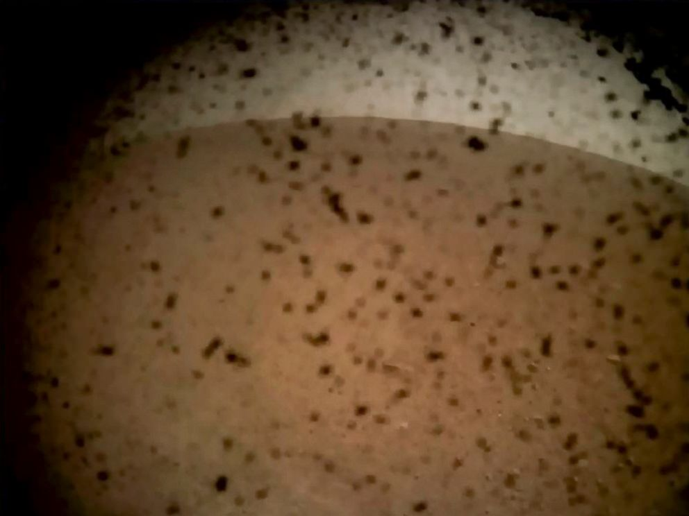 PHOTO: In this frame grab taken from NASA TV on Nov. 26, 2018, debris is seen on the lens in the first image from NASAs InSight lander after it touched down on the surface of Mars.