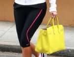 Who Was Seen Carrying A Birkin?