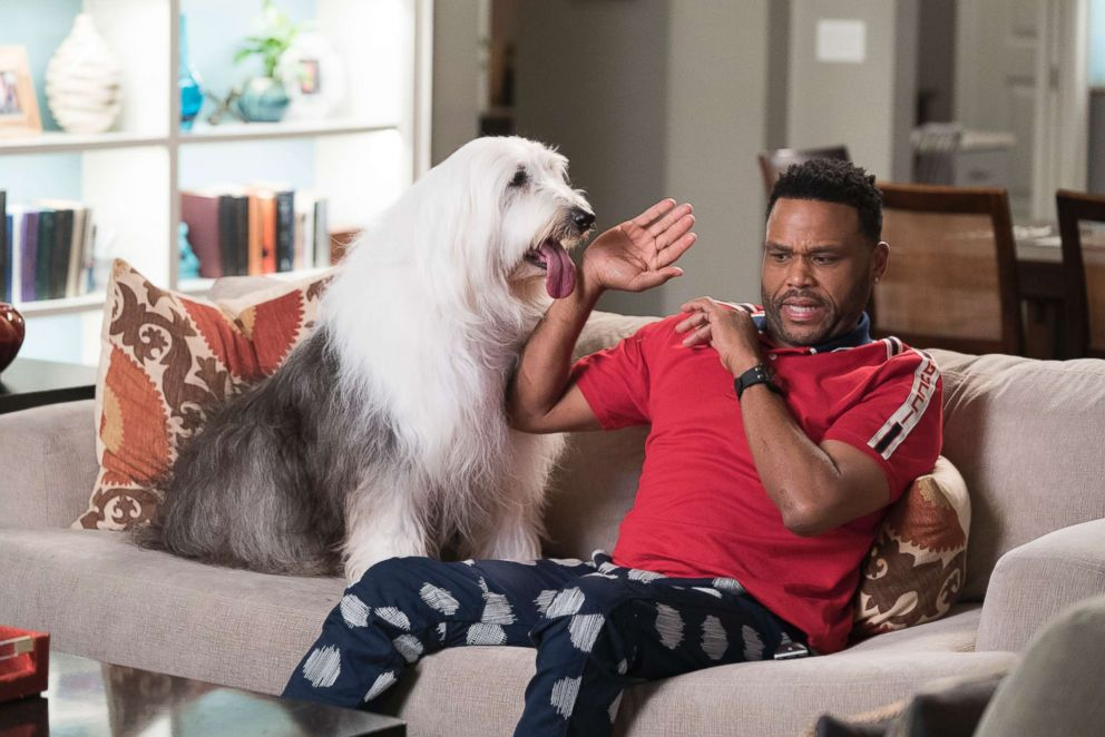 PHOTO: Anthony Anderson in a scene on ABCs black-ish.