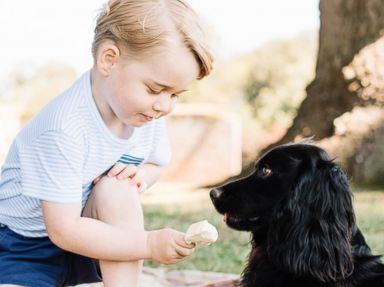 Prince George Celebrates His Third Birthday