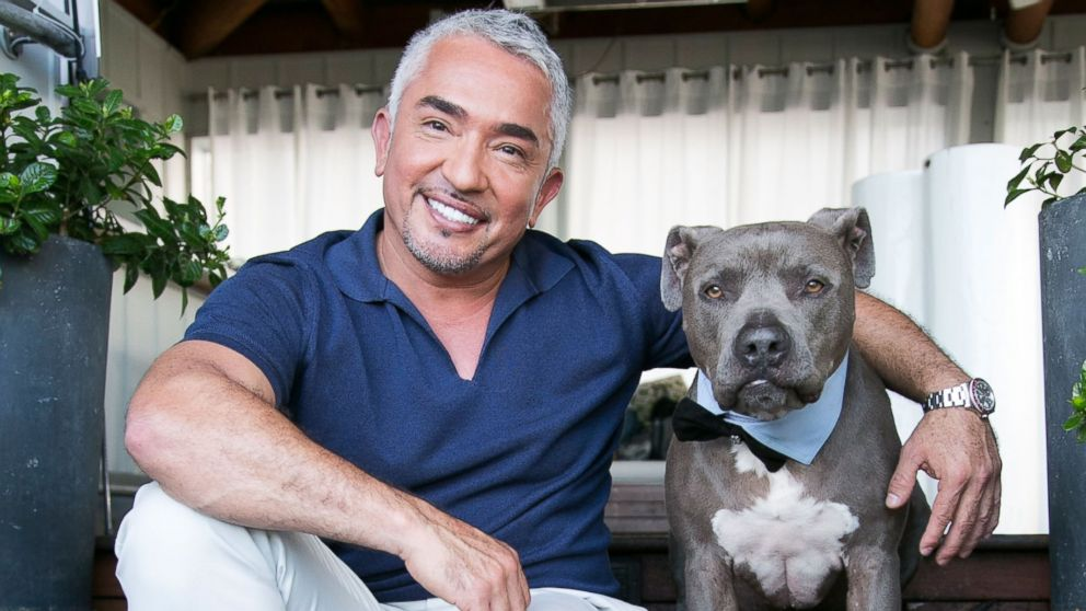 Cesar millan engaged