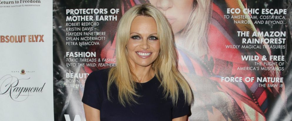 PHOTO: Pamela Anderson attends Coco Eco Magazines Wild At Heart issue launch party and PAMMIES preview on Nov. 19, 2015 in Santa Monica, Calif.