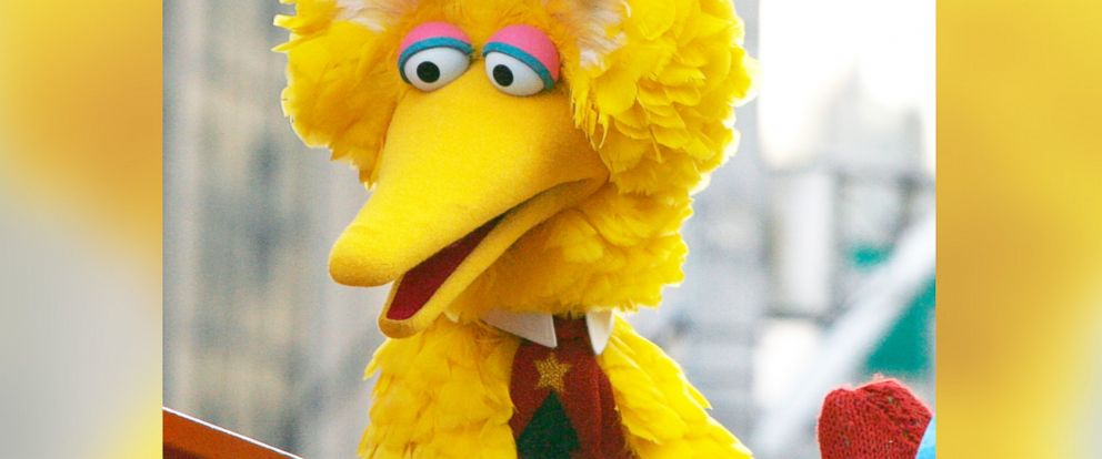 PHOTO: Big Bird of Sesame Street attends the 86th Annual Macys Thanksgiving Day Parade on Nov. 22, 2012 in New York City.