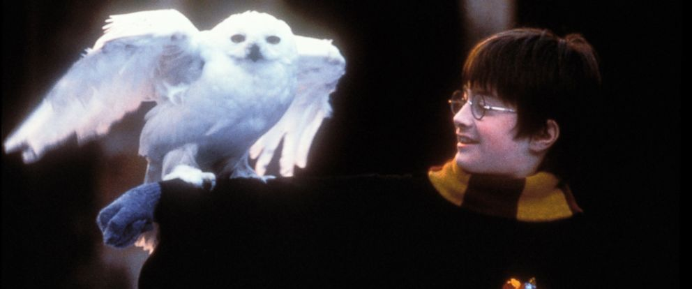 "PHOTO: Daniel Radcliffe as Harry Potter in a scene from ""Harry Potter and the Sorcerors Stone."""