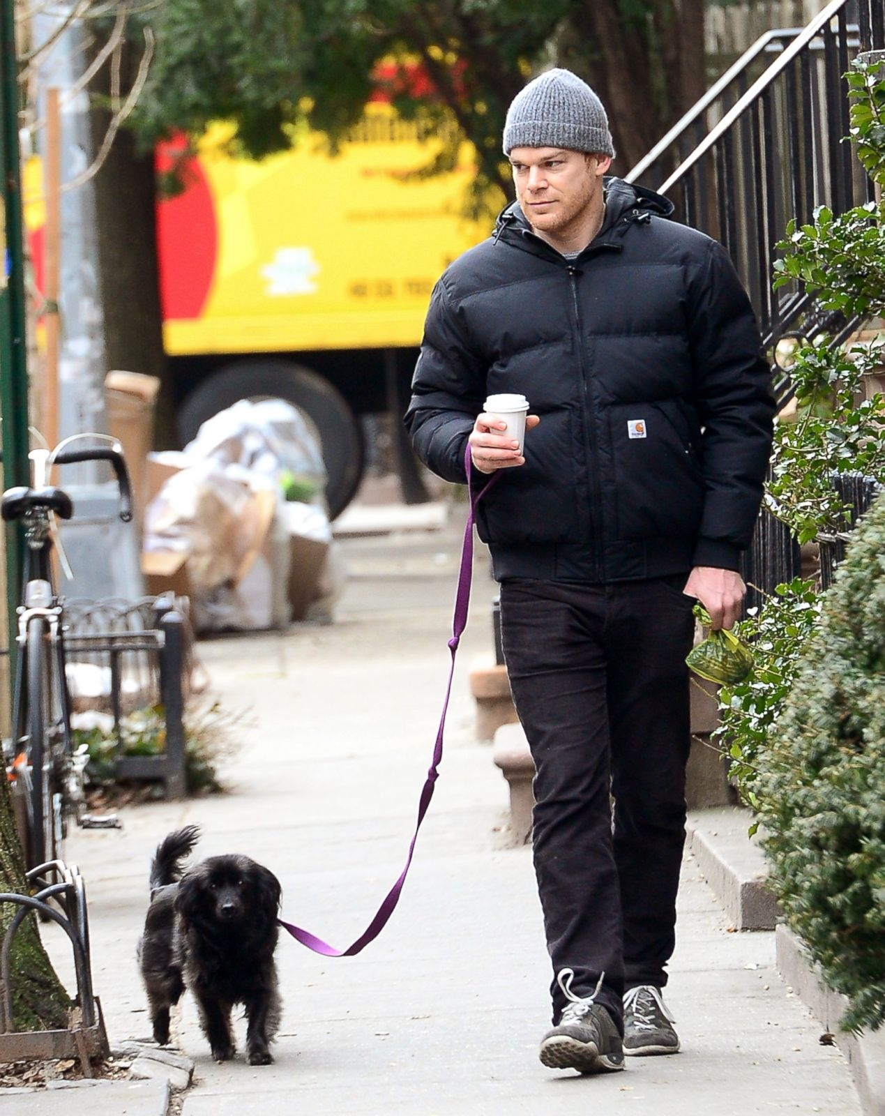 Meet Michael C Halls Tiny Pooch Picture Celebs And Their Pets