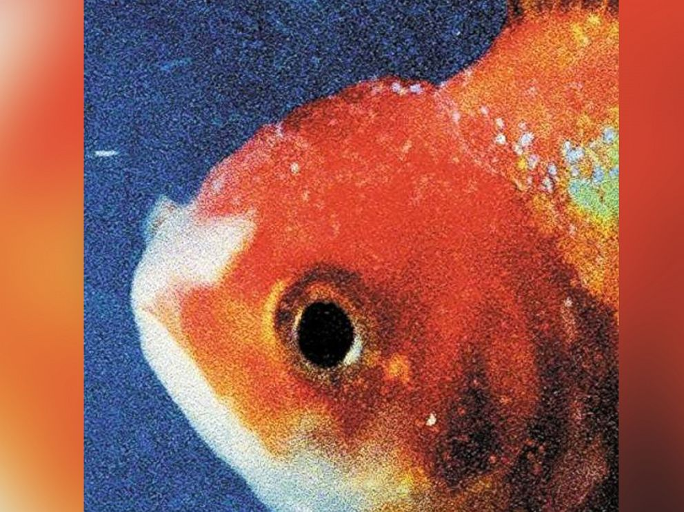 PHOTO: Vince Staples - Big Fish Theory