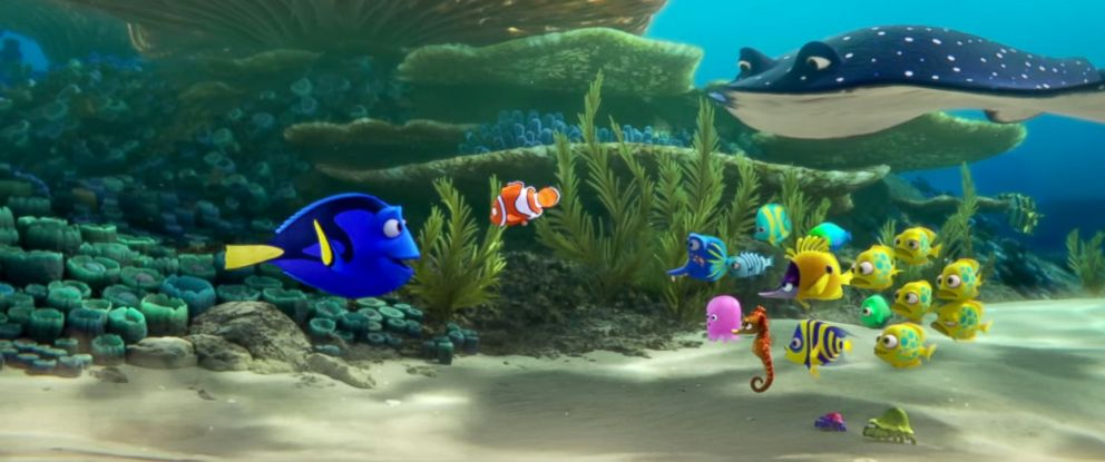 Finding Dory Trailer Premieres Online Abc News