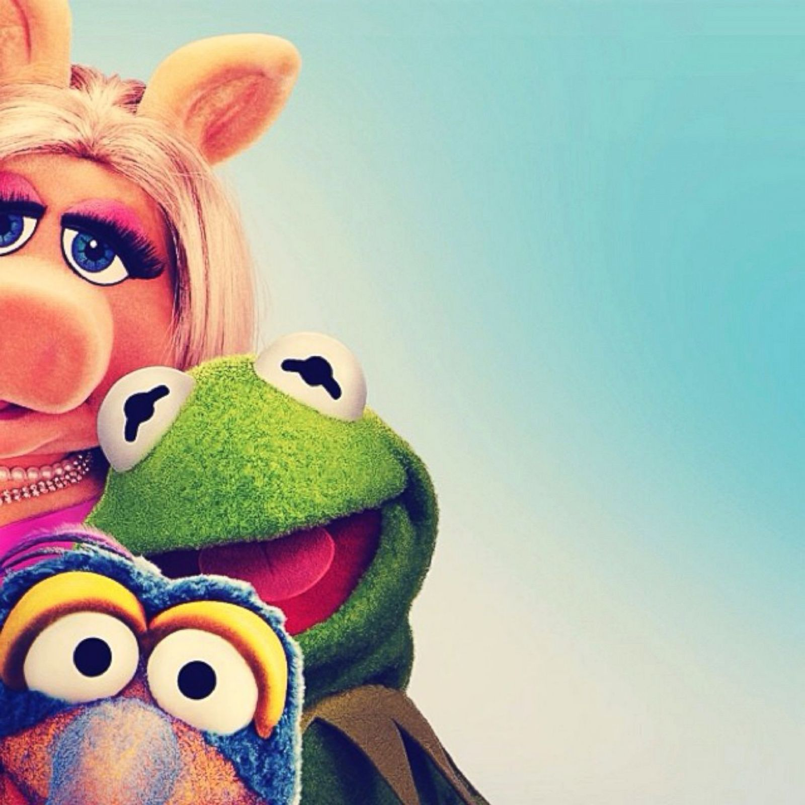 Say Cheese! The Muppets Share Selfies Photos - ABC News