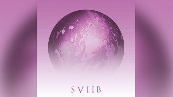 """PHOTO: School Of Seven Bells - """"SVIIB"""""""