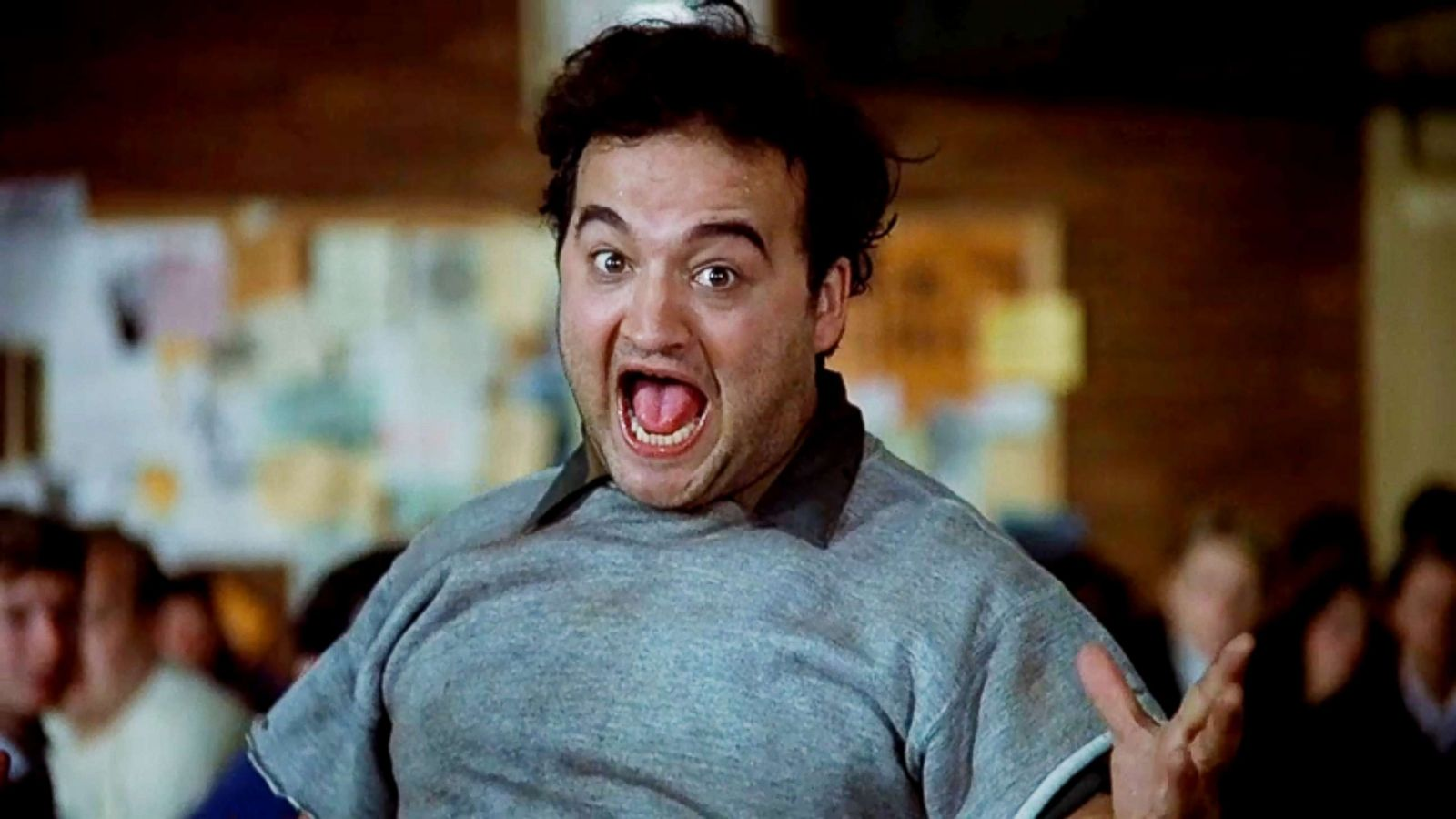 animal house a look back at the classic film 40 years later abc news