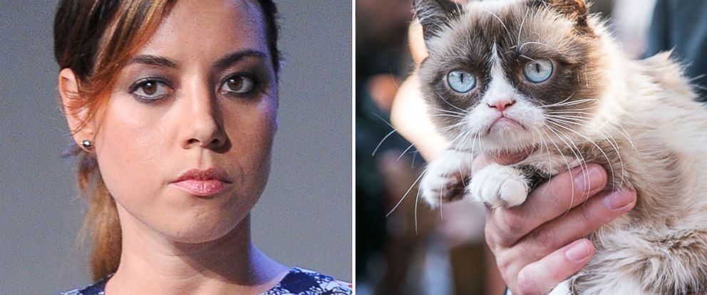 Actress Aubrey Plaza is seen in New York on July 30, 2014 and Grumpy Cat is seen in Santa Monica, Calif. on Aug. 4, 2014.