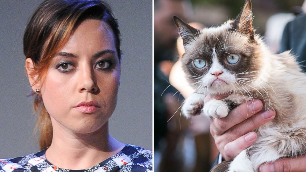 Aubrey plaza to voice grumpy cat in new movie abc news thecheapjerseys Choice Image