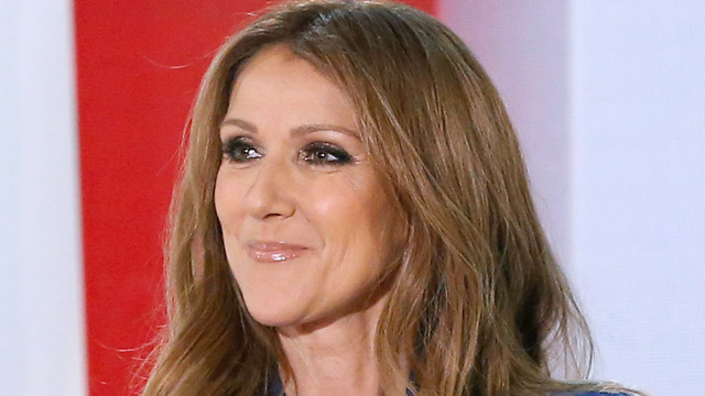 "PHOTO: Celine Dion appears on the French TV show ""Vivement Dimanche"" in Paris, Nov. 13, 2013."