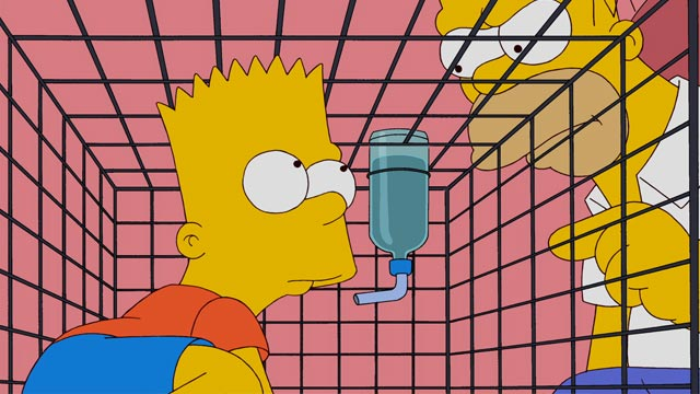 PHOTO: Bart and Homer Simpson