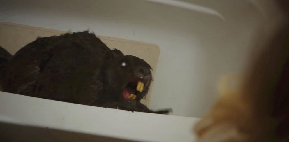 """PHOTO: A scene from the trailer of the upcoming film, """"Zombeavers""""."""
