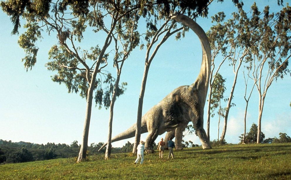 PHOTO: A brontosaurus eats leaves in a scene from the film Jurassic Park, 1993.