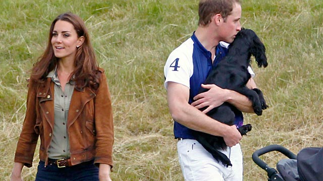 PHOTO: Catherine, Duchess of Cambridge and Prince William, Duke of Cambridge, with their pet dog Lupo at Beaufort Polo Club in Westonbirt, Gloucestershire, England, June 17, 2012.