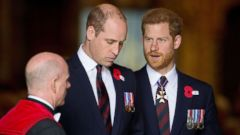 PHOTO: Prince William and Prince Harry attend the ANZAC Day service at Westminster Abbey in London, April 25, 2018.