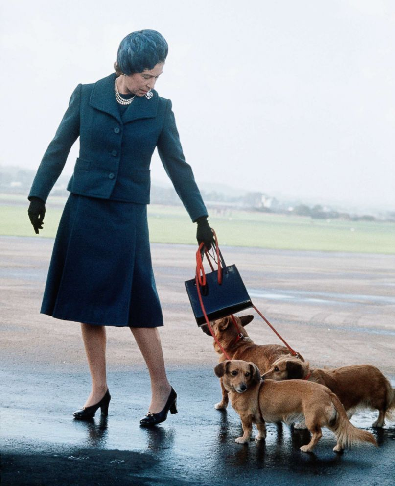 PHOTO: Queen Elizabeth II arrives at Aberdeen Airport with her corgis to start her holidays in Balmoral, Scotland in 1974.