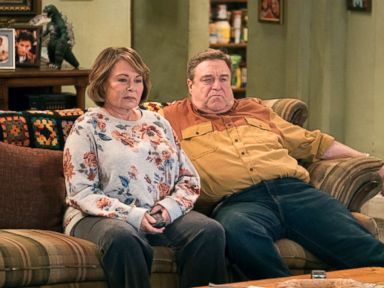 What's next for 'Roseanne' cast and staff after cancellation