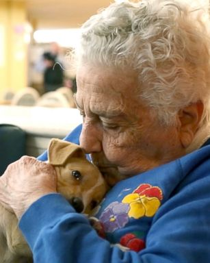 Adoptable puppies help local seniors living with dementia