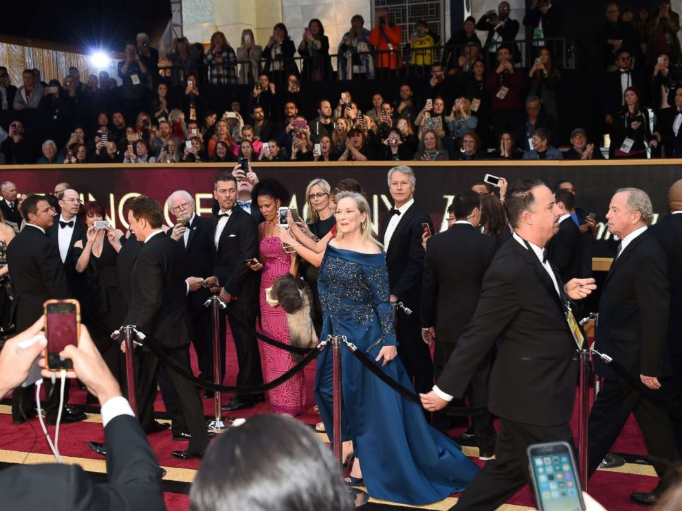 PHOTO: Nominee for Best Actress Florence Foster Jenkins Meryl Streep arrives on the red carpet for the 89th Oscars,n Feb. 26, 2017, in Hollywood, Calif.