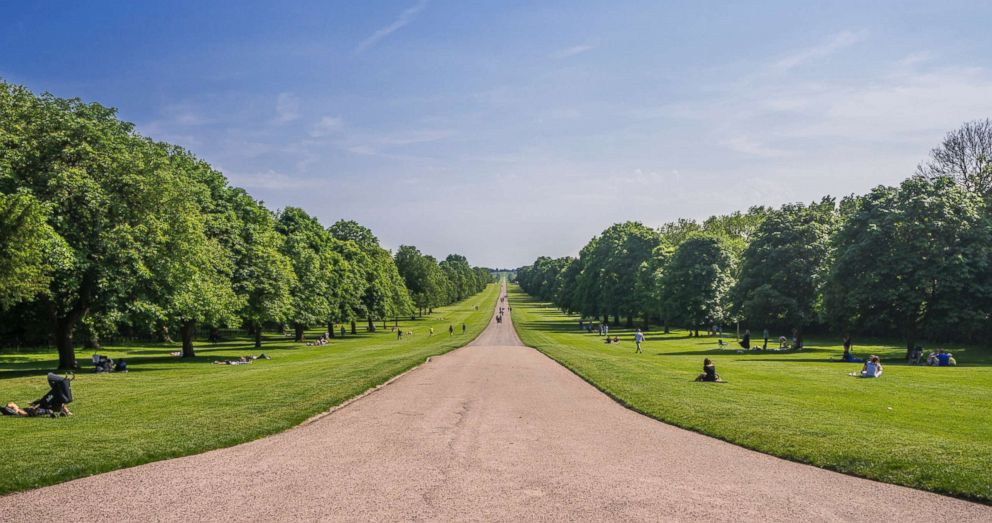 PHOTO: The Long Walk of Windsor Great Park in England is pictured in this undated stock photo.