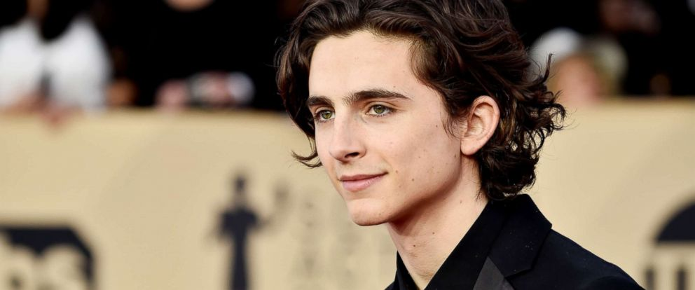 PHOTO: Timothee Chalamet attends the 24th Annual Screen ActorsGuild Awards on Jan. 21, 2018, in Los Angeles.