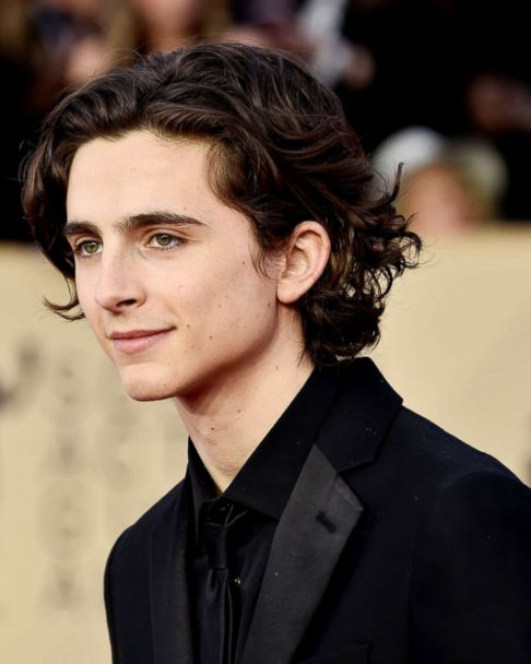 Oscar Nominee Timothee Chalamet On Call Me By Your Name And The Time He Embarrassed Himself With Lady Bird Co Star Saoirse Ronan Abc News