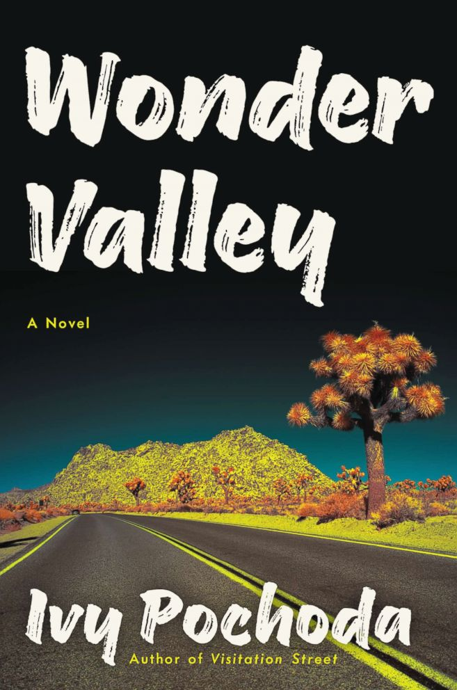 PHOTO: The cover for Wonder Valley by Ivy Pochoda is pictured here.