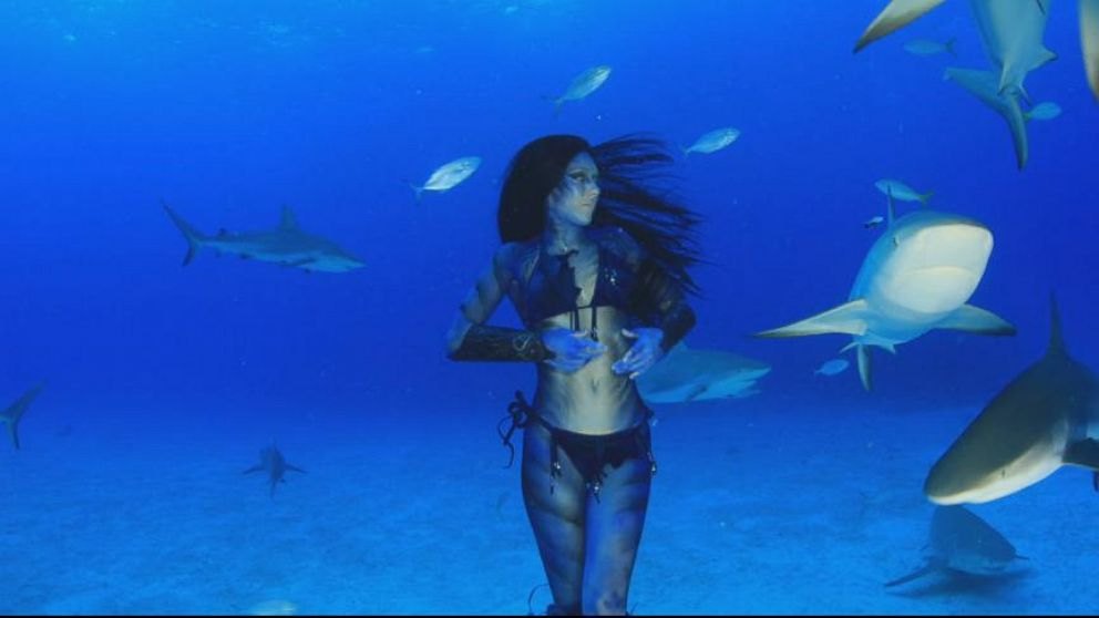 reallife mermaid swims with the sharks video abc news