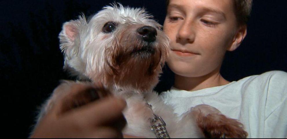 VIDEO: Community Rallies to Help Boy Reach Goal, Adopt Puppy