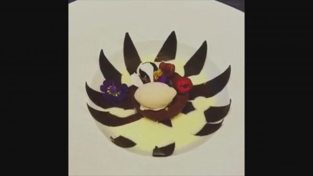 Video This Chocolate Dessert Blooms Open Like A Flower Here S How